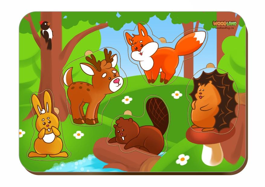Рамка-вкладыш WOODLAND 011504 Лесные животные