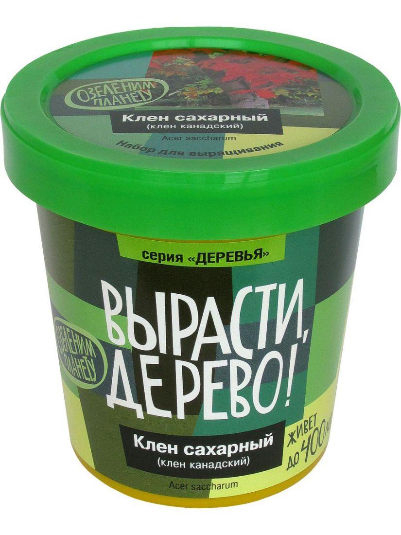 Набор для выращивания ВЫРАСТИ ДЕРЕВО! zk-064 Клен сахарный