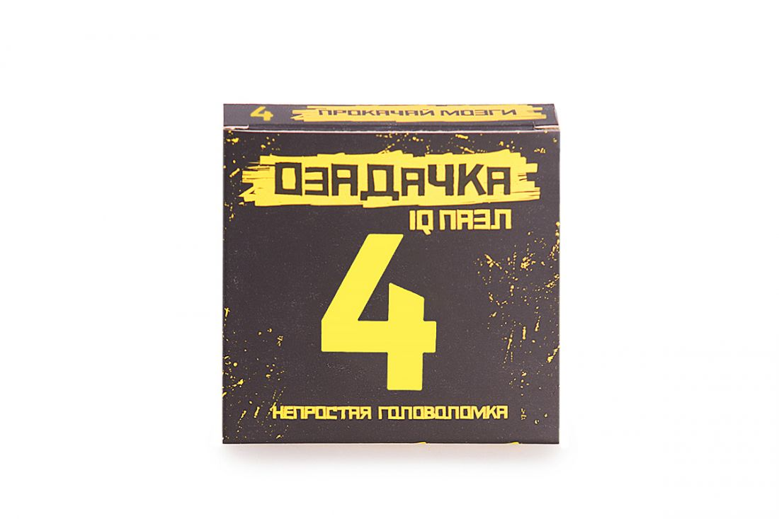 Головоломка ОЗАДАЧКА 22786 Тип 4