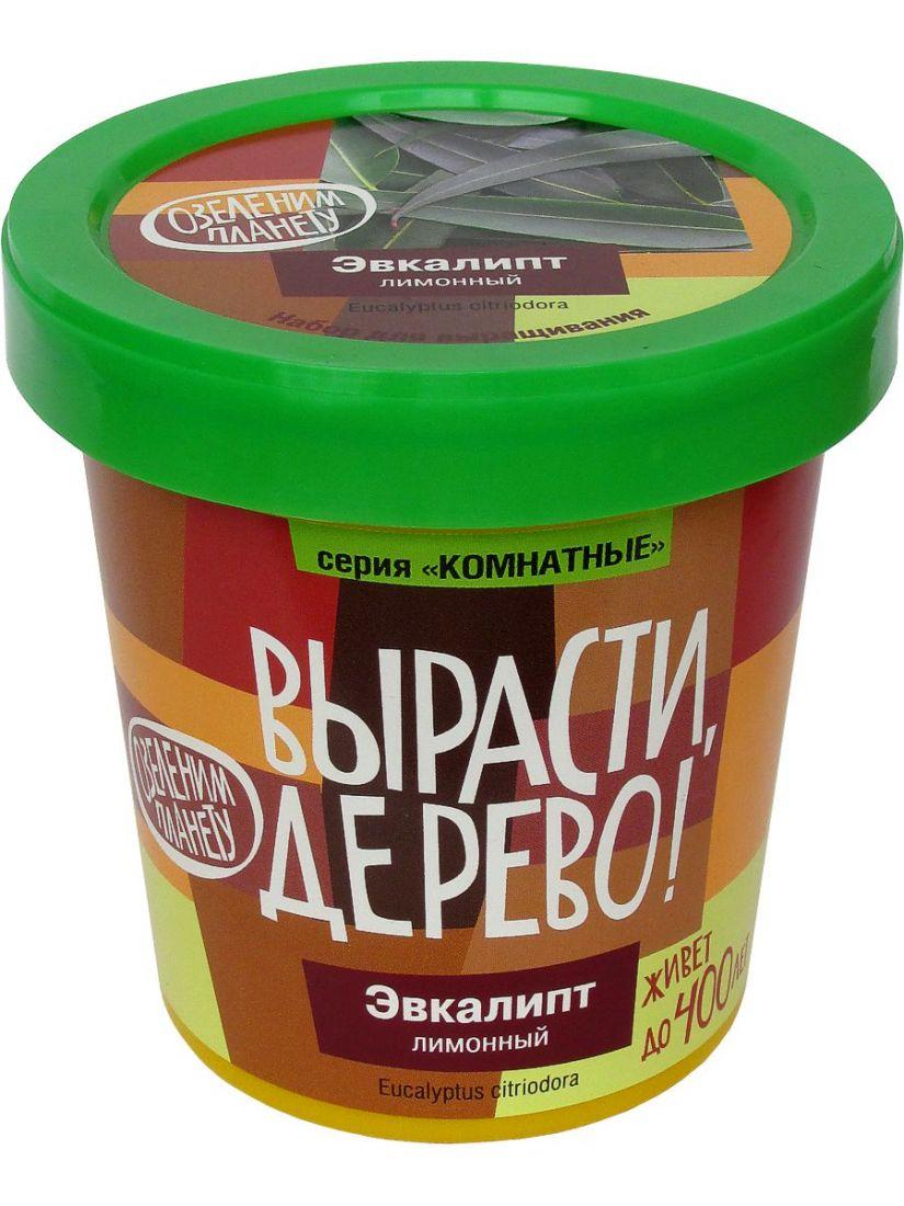Набор для выращивания ВЫРАСТИ ДЕРЕВО! zk-094 Эвкалипт лимонный