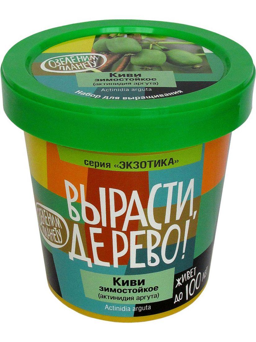 Набор для выращивания ВЫРАСТИ ДЕРЕВО! zk-095 Киви зимостойкое