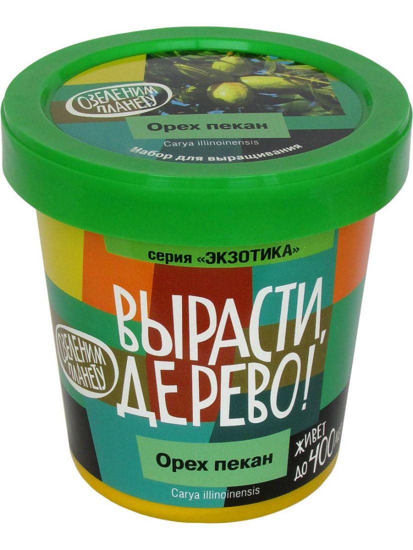 Набор для выращивания ВЫРАСТИ ДЕРЕВО! zk-084 Орех пекан