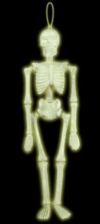 Скелет светящийся в темноте