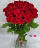 51 Роз сорта Ред Наоми