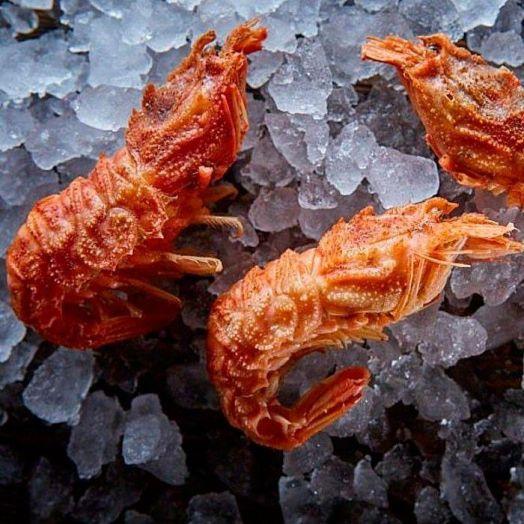 Креветка медведки (шримс-медвежонок) 70/90, варено-мороженное, Дальний Восток (цена за кг)