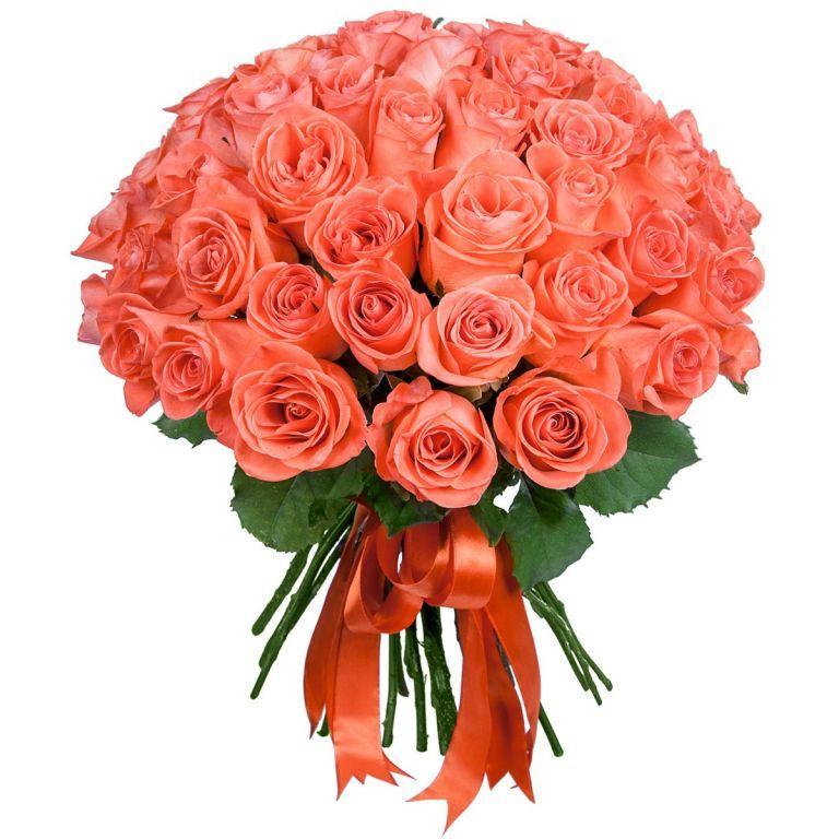 Коралловые розы 60 см