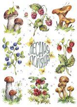 Почтовая открытка Лесная поляна