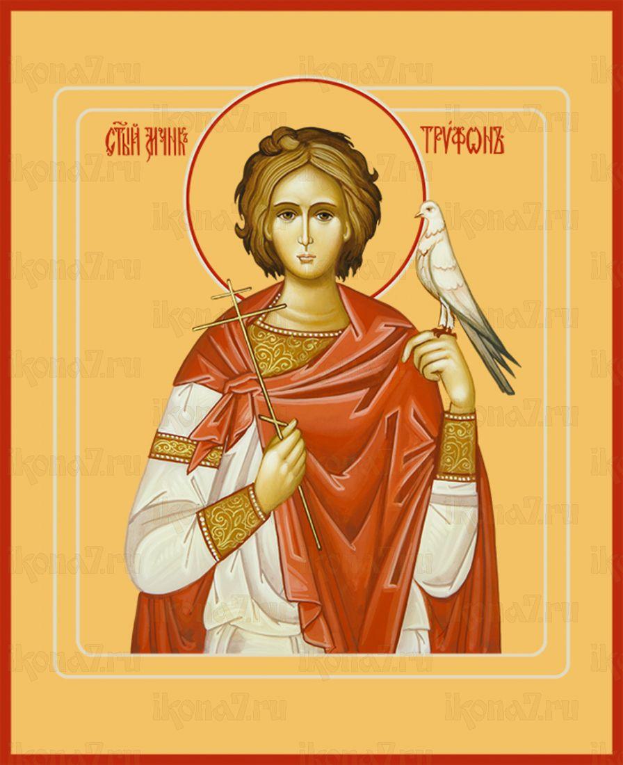 Икона Трифон Апамейский мученик