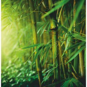 """Картина на подрамнике """"Бамбук"""" 30*30 см   4194702"""