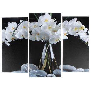 """Модульная картина """"Орхидеи в вазе""""  (2-25х52; 1-30х60) 60х80 см   3981636"""