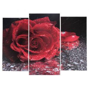 "Модульная картина ""Роза под дождём""  (2-25х52; 1-30х60) 60х80 см   3981637"