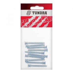 Винт конфирмат TUNDRA krep, 6.3х50 мм, стальной, оцинкованный, в упаковке 10 шт. 5082522