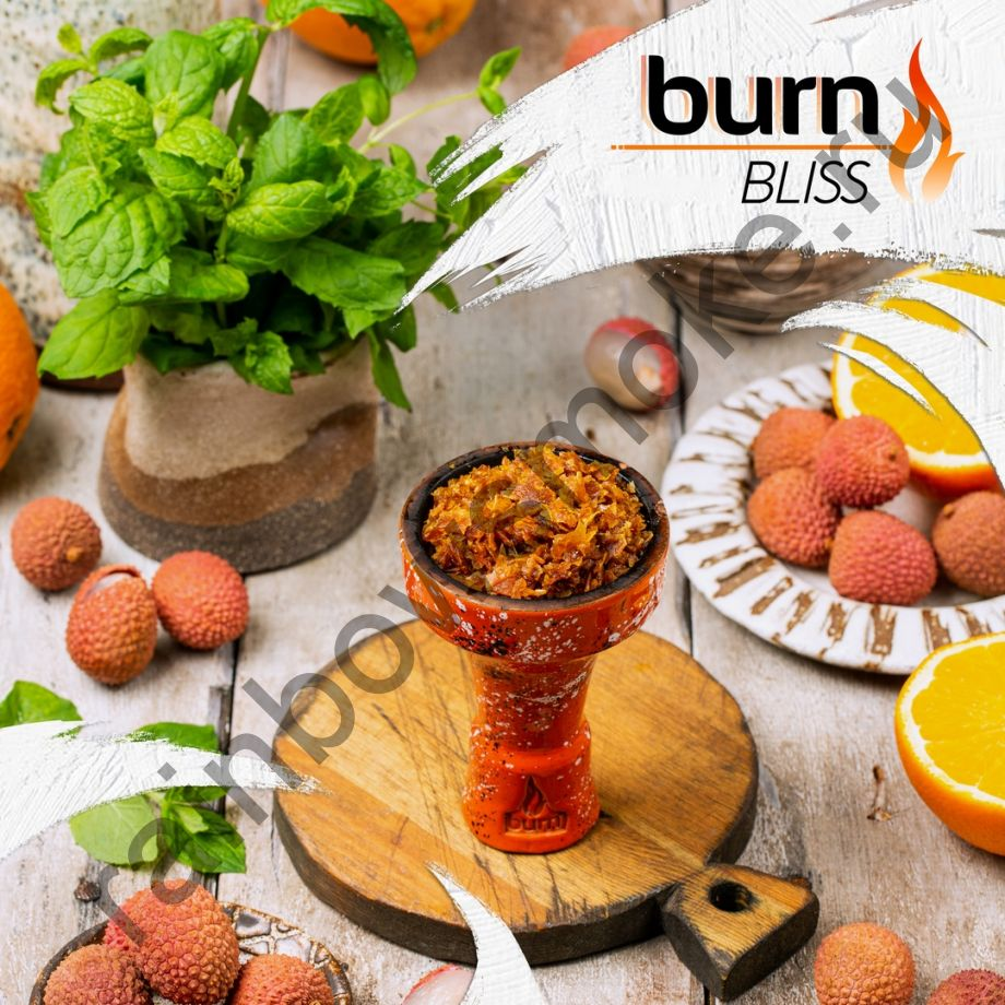 Burn 100 гр - Bliss (Блаженство)