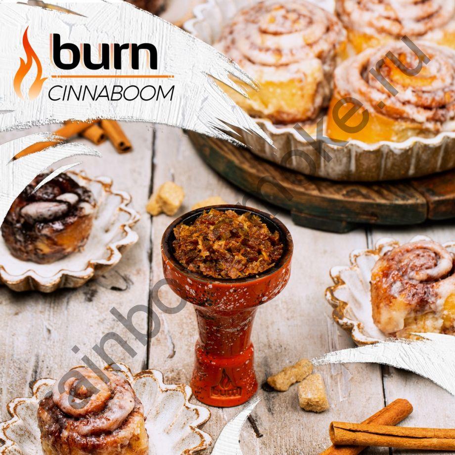 Burn 100 гр - Cinnaboom (Синнабум)