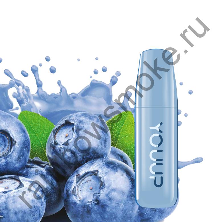 Электронная сигарета Dexx YOUUP ЧЕРНИКА 1,2% NIC (Blueberry)