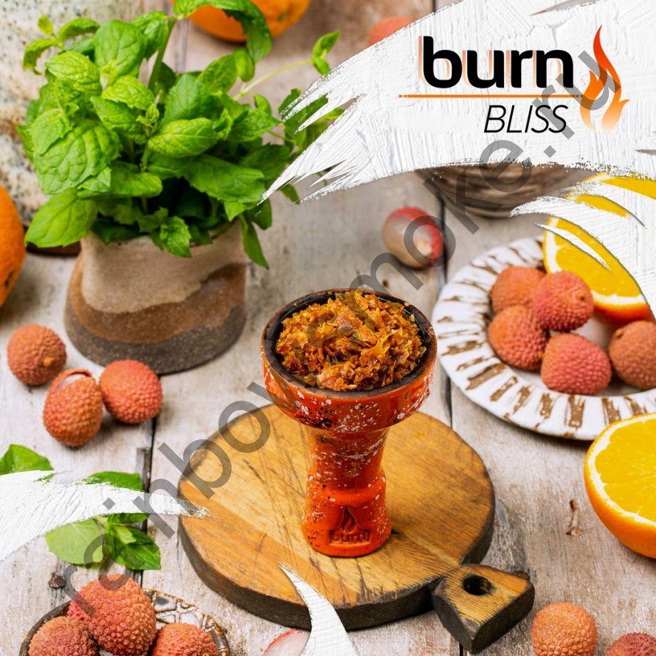 Burn 200 гр - Bliss (Блаженство)