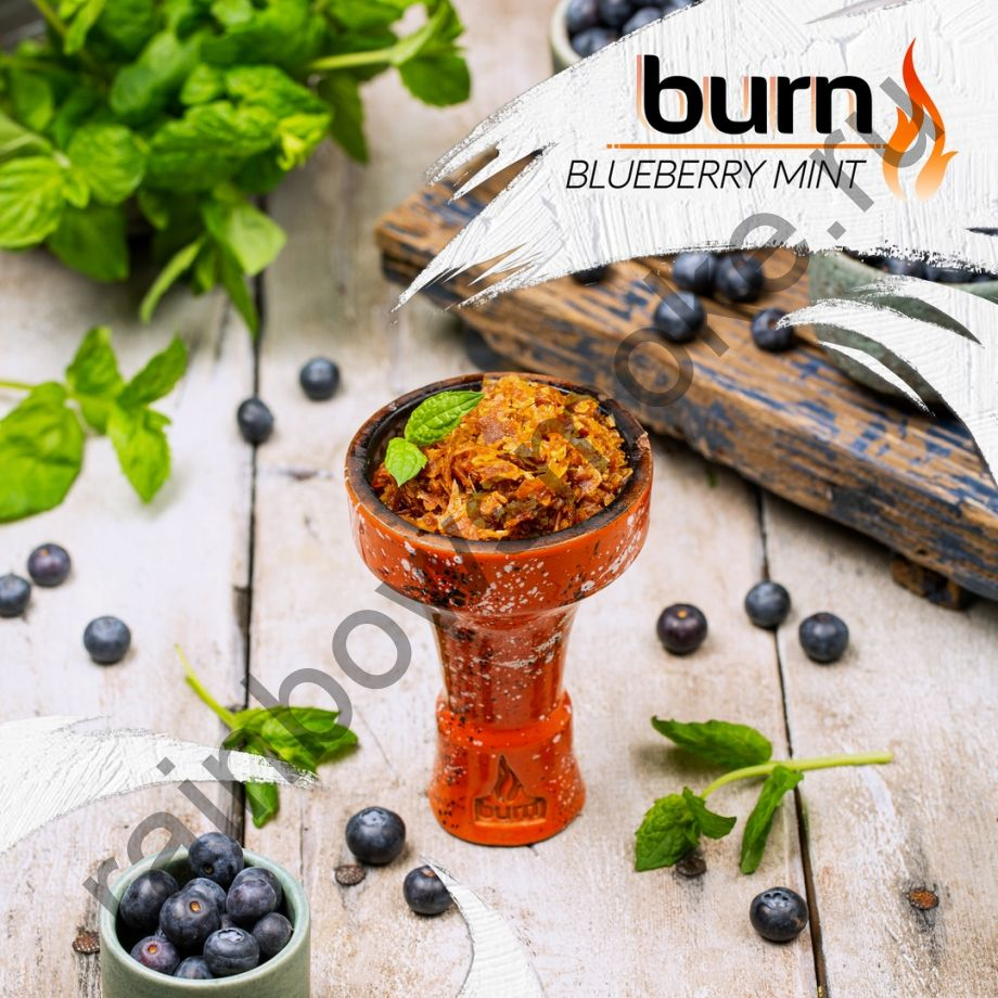 Burn 200 гр - Blueberry Mint (Черника с Мятой)