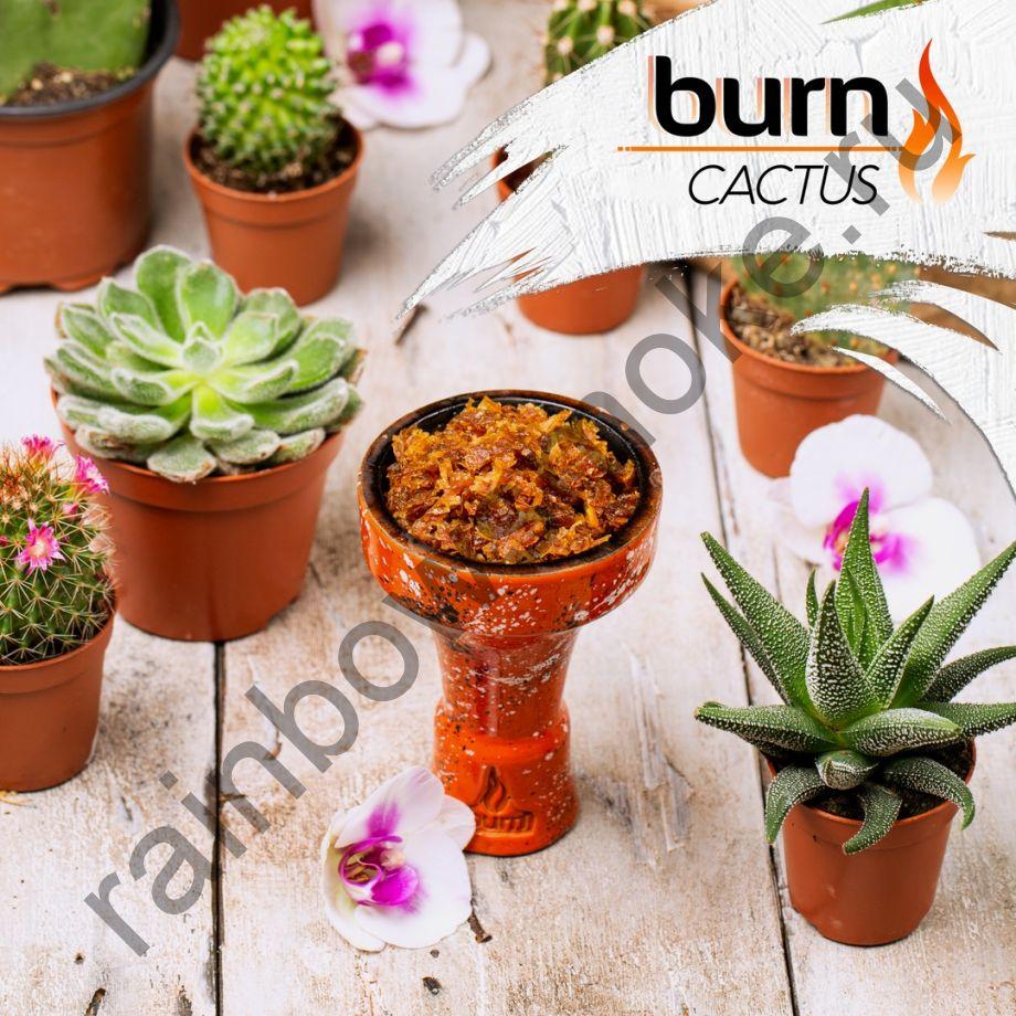 Burn 200 гр - Cactus (Кактус)