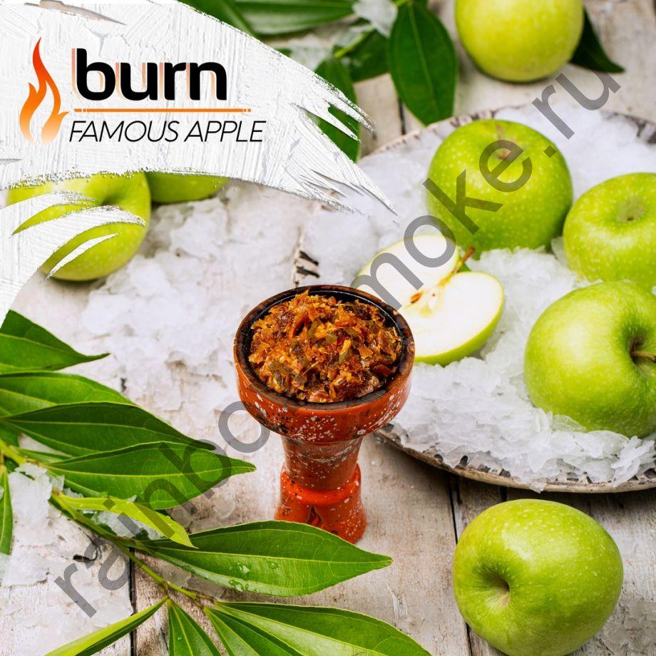 Burn 200 гр - Famous Apple (Знаменитое Яблоко)