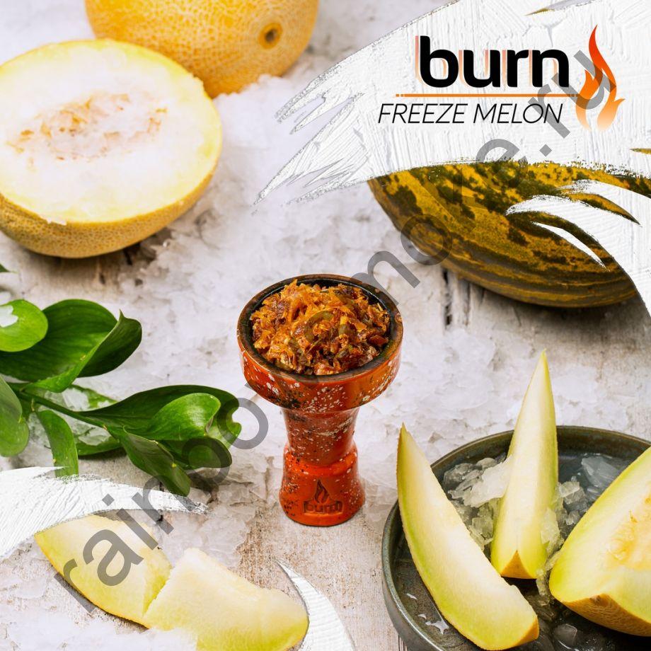 Burn 200 гр - Freeze Melon (Морозная Дыня)