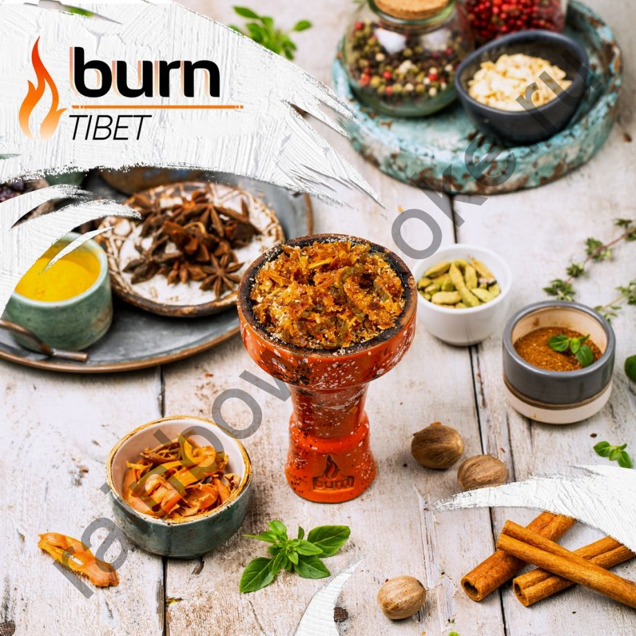 Burn 200 гр - Tibet (Тибет)