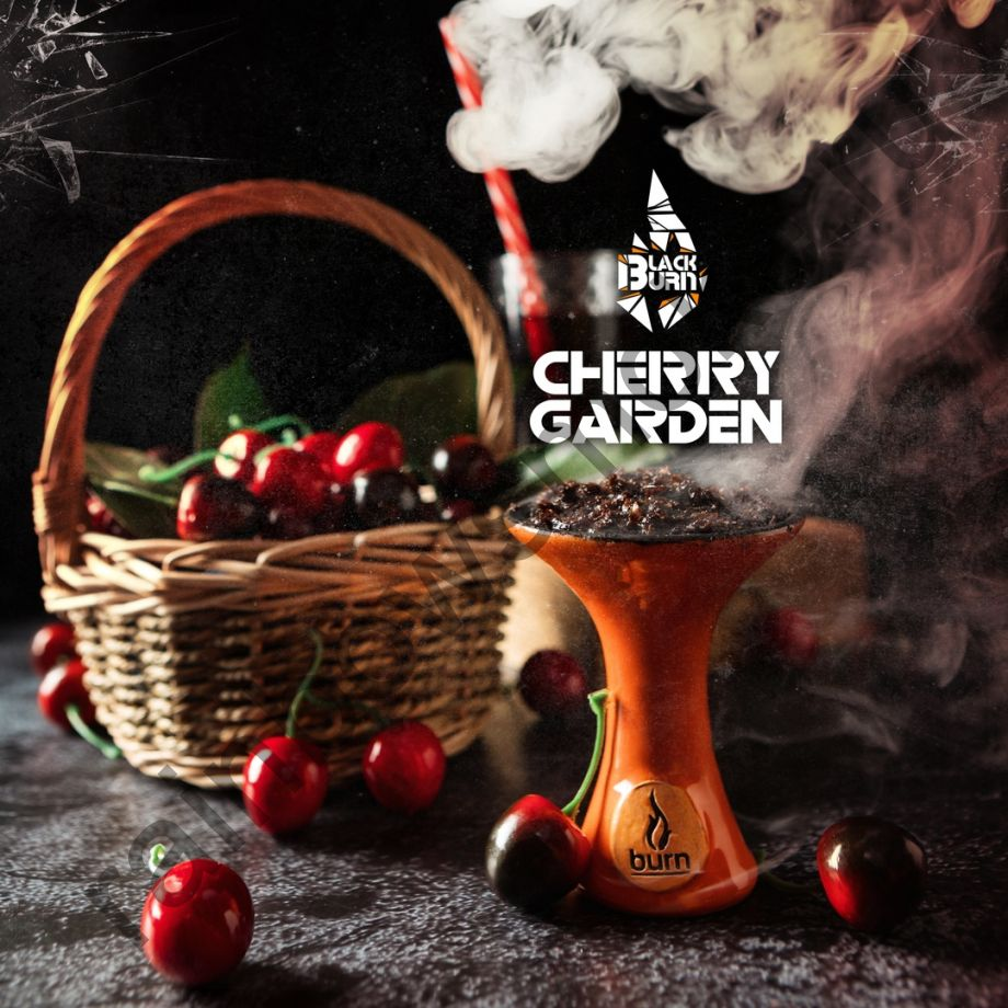 Black Burn 200 гр - Cherry Garden (Вишневый Сад)