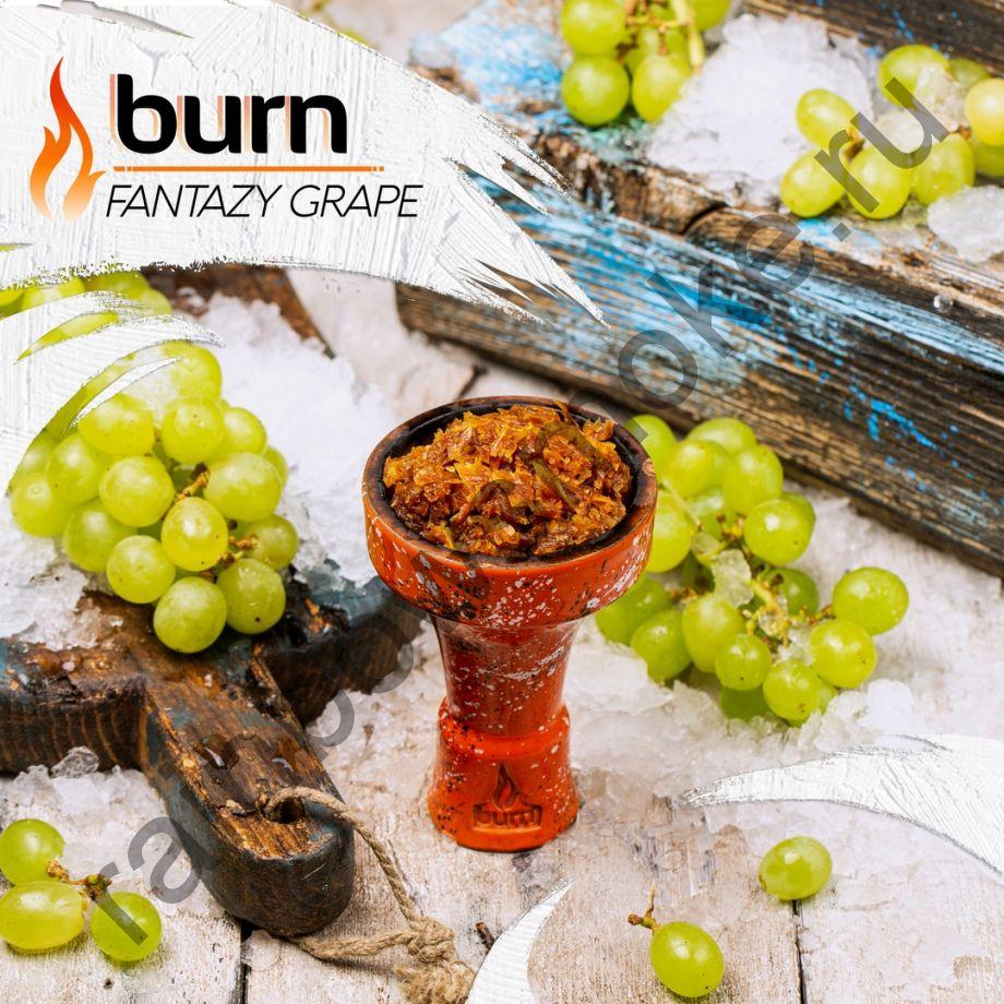 Burn 200 гр - Fantazy Grape (Фантастический Виноград)