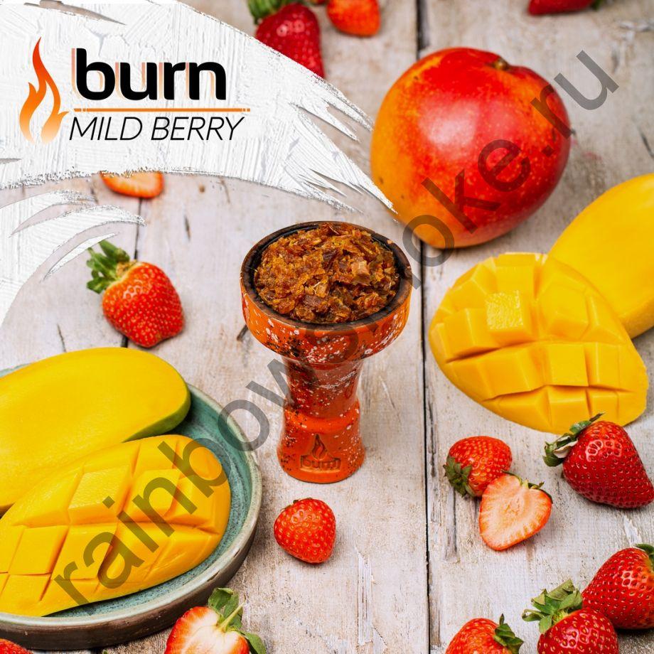 Burn 200 гр - Mild Berry (Милд Бэрри)
