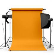 Фотофон виниловый Подсолнечник ширина 2-2.5м