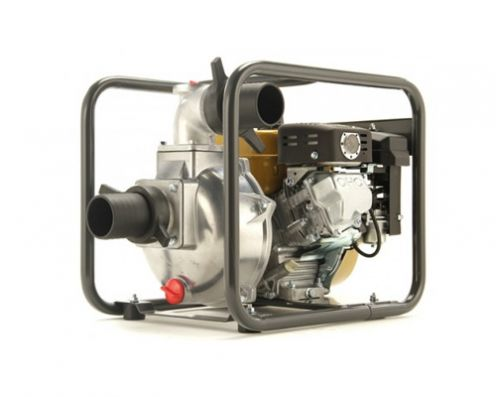 Caiman CP-305ST