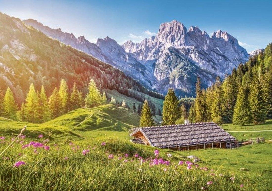 Пазлы 500 Лето в Альпах