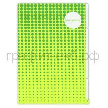 Конверт А4 5-ти уровневый Феникс+ Зеленый горох/Оранжевая геометрия 49675/49676