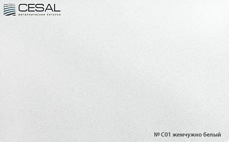 Кассета Cesal 300х450 жемчужно-белый C01