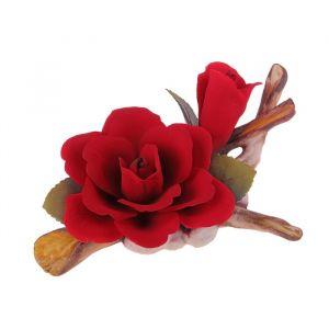 Декоративная роза Elisabeth
