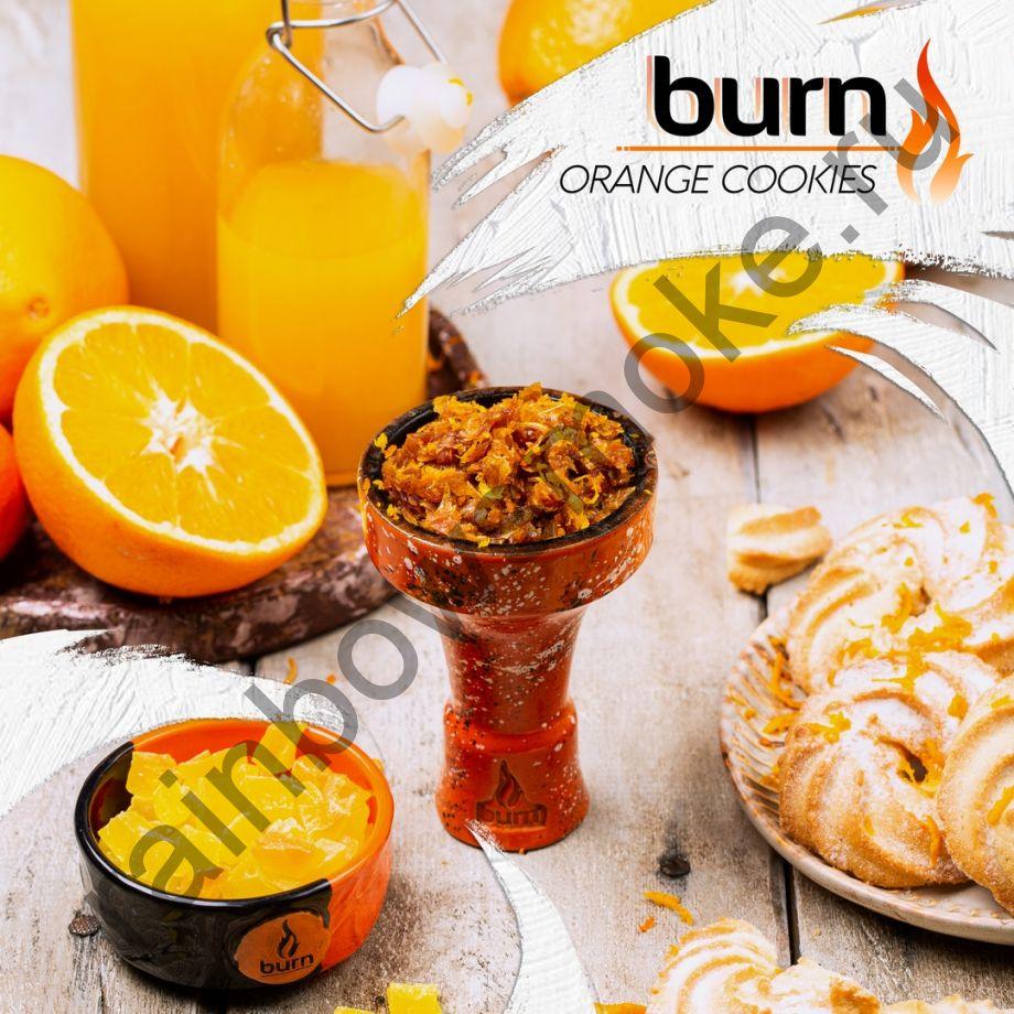 Burn 200 гр - Orange Cookies (Апельсиновое Печенье)