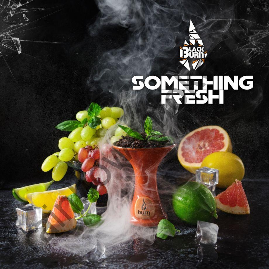 Black Burn 100 гр - Something Fresh (Что-то Свежее)