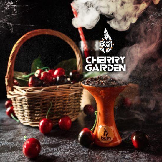 Burn BLACK Cherry garden 20гр
