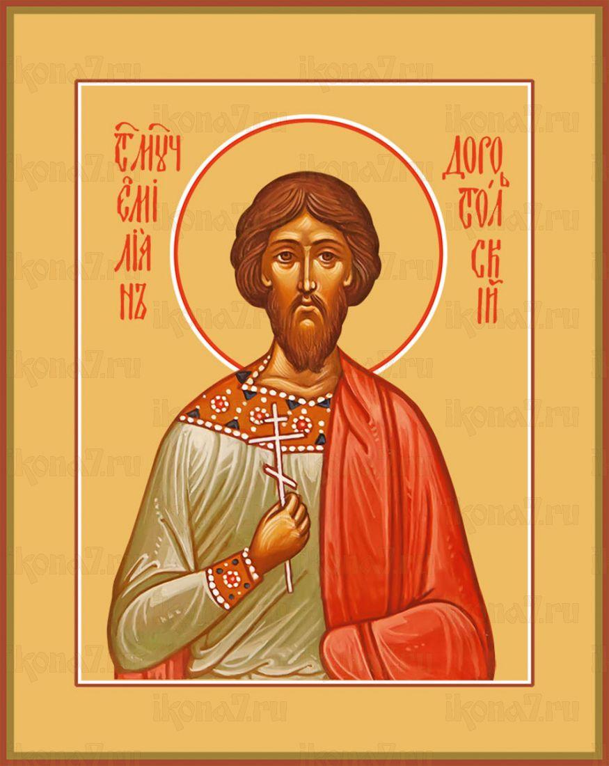 Икона Емилиан Доростольский мученик