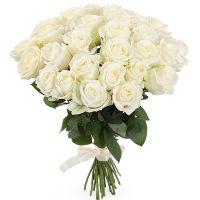 Букет из белых российских роз от 19 шт