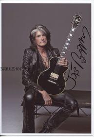 Автограф: Джо Перри. Aerosmith. Hollywood Vampires