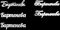 Фамилия из дерева Бартенева на заказ