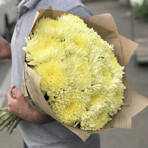 15 одноголовых хризантем