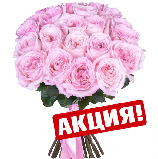 Пионовидные розы O'Hara Pink.  От 15 роз в букете.