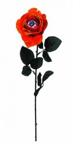 Роза с глазом