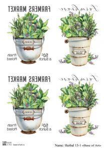 Herbal 13-1
