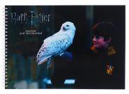 Альбом для рисования А4, 25 листов на спирали «Гарри Поттер и философский камень», 160 г/м², с заданиями
