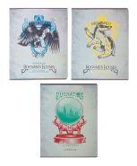 Тетрадь 48 листов в клетку «Гарри Поттер», обложка мелованный картон, матовая ламинация (