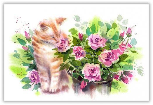 Кот с розами