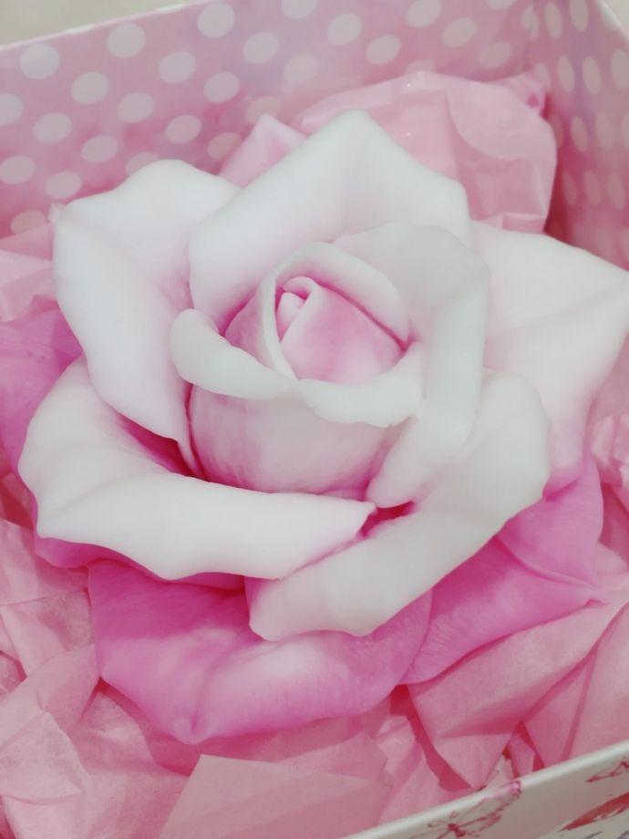 ~Королевская роза~