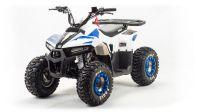 Детский квадроцикл бензиновый Motoland Eagle 110